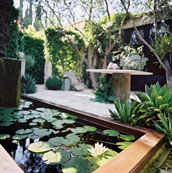 Scott Shrader Garden Design Blog Ideas Courtyard Pond American Landscape Designer