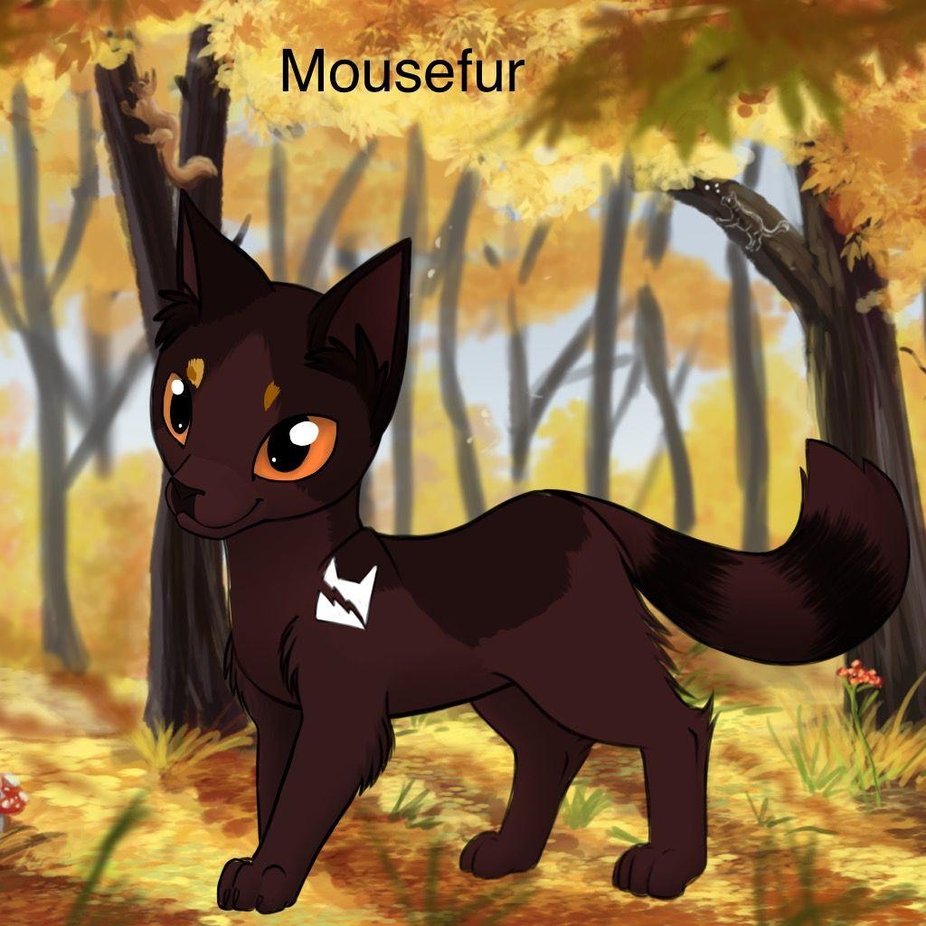 Mousefur | warrior cats | Warrior cats, Avatar maker, Cats
