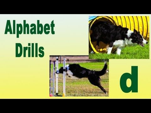 Agility Dog Training Alphabet Drills Pam S Dog Academy Www