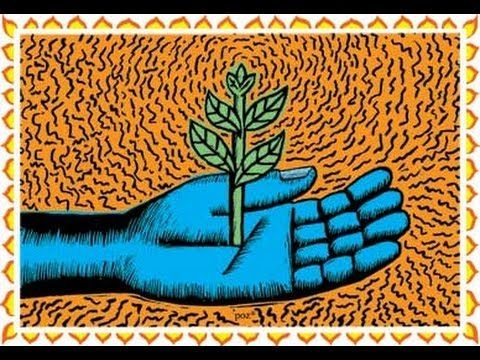 """""""Permaculture Trio"""" -- Forest Gardening, Edible Landscapes & Urban Permaculture - YouTube"""