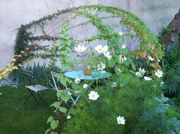 Igloo De Verdure Jardins Verdure Fer A Beton