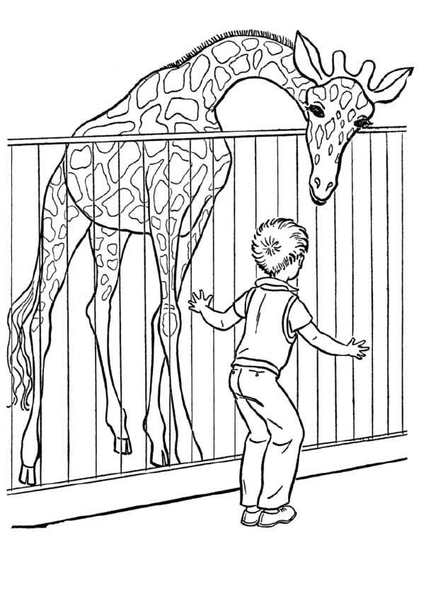 Print Coloring Image Momjunction Zoo Coloring Pages Zoo Animal Coloring Pages Animal Coloring Pages