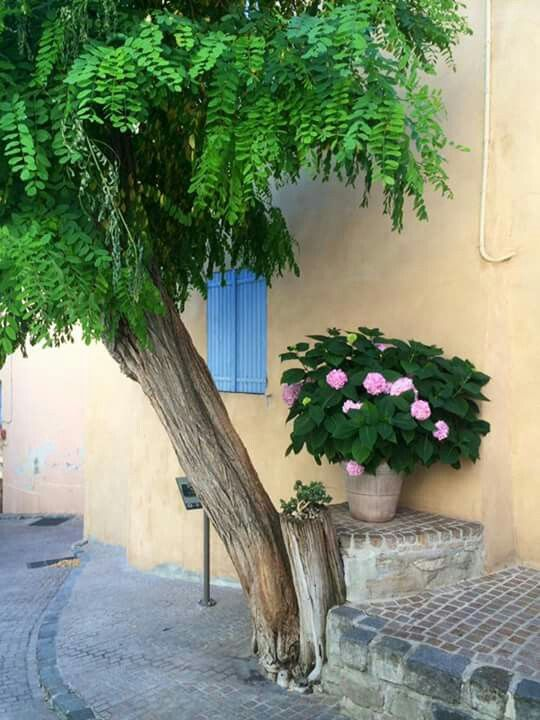 Le Castellet in the Var Photo Belle Provence Travels