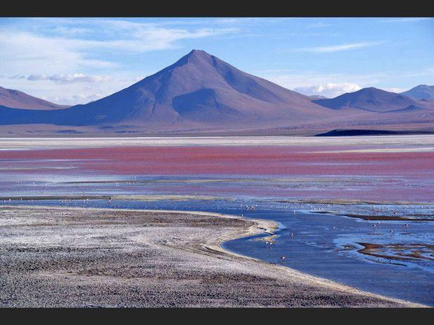 La lagune Colorada, en Bolivie