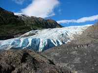 exit glacier hiking tour travel alaska pinterest alaska