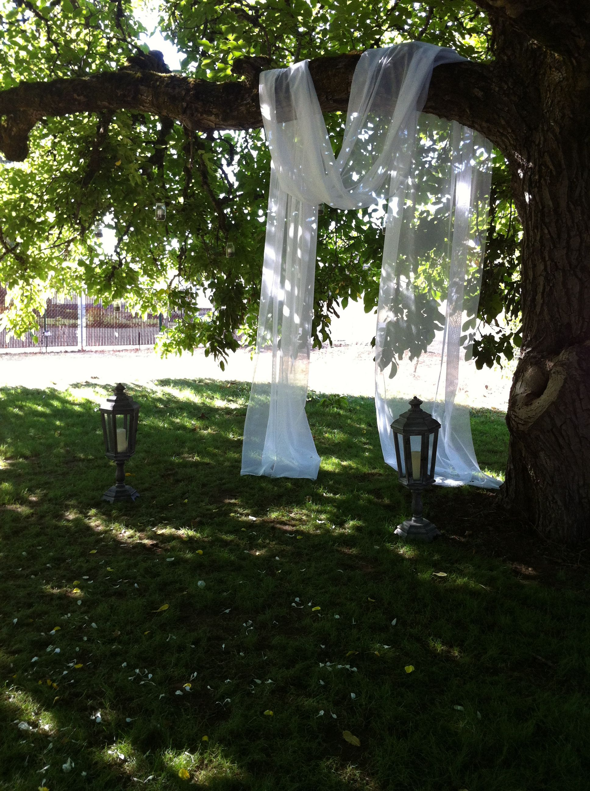drape fabric over tree branches for an alter | DIY Wedding Decor in ...