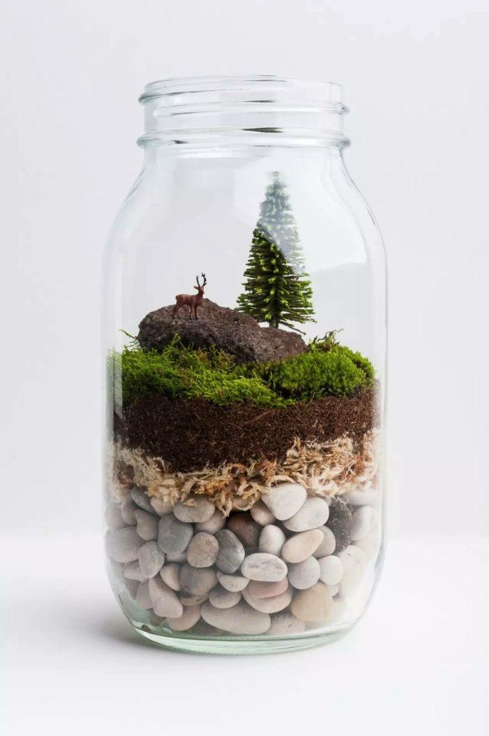 diy faire son propre terrarium plante pour d corer la maison terraria. Black Bedroom Furniture Sets. Home Design Ideas
