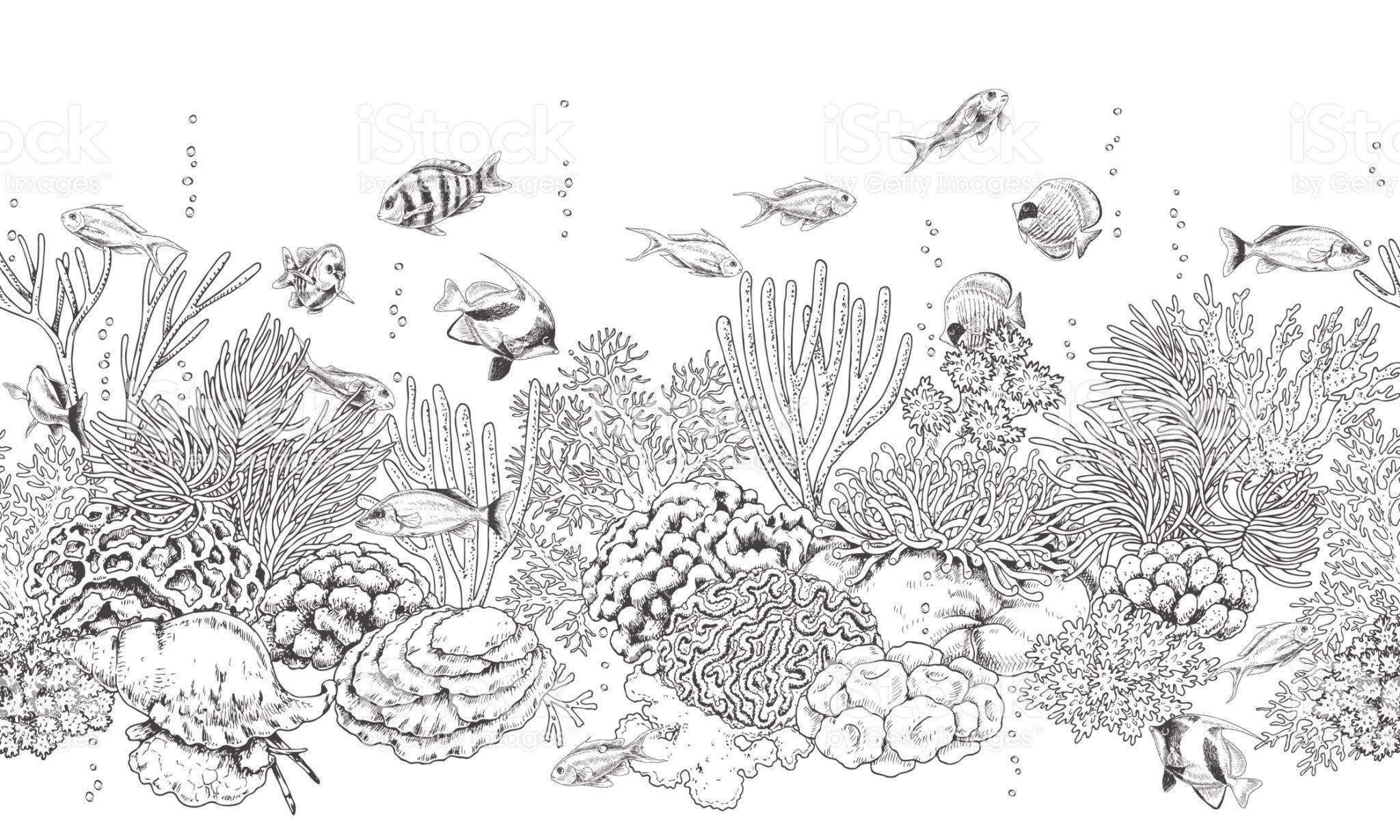 Hand drawn underwater natural elements Seamless line