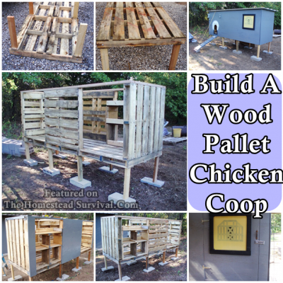 The homestead survival build a lone grove wood pallet for How to build a chicken coop from wooden pallets