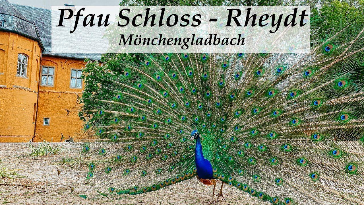 Video Von Schloss Rheydt Monchengladbach Teufelsschlucht Nrw Reisen Mit Kindern
