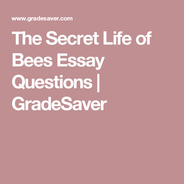 The Secret Life Of Bees Essay Questions  Gradesaver  Reading  The Secret Life Of Bees Essay Questions  Gradesaver Owl Online Writing also Best Assignment Writing Service Uk  Legitimate Online Writing Services