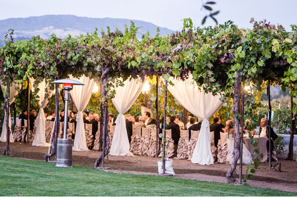 Trentadue Winery Sonoma County Wine Country Wedding Forest Wedding Venue Trentadue Winery