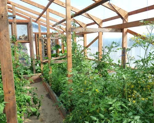Backyard Greenhouse Frmhouse Chicgo Backyard Greenhouses 400 x 300