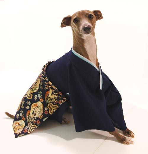 Dog Costume Japanese Hakama Kimono Dog Costume Dog Costumes