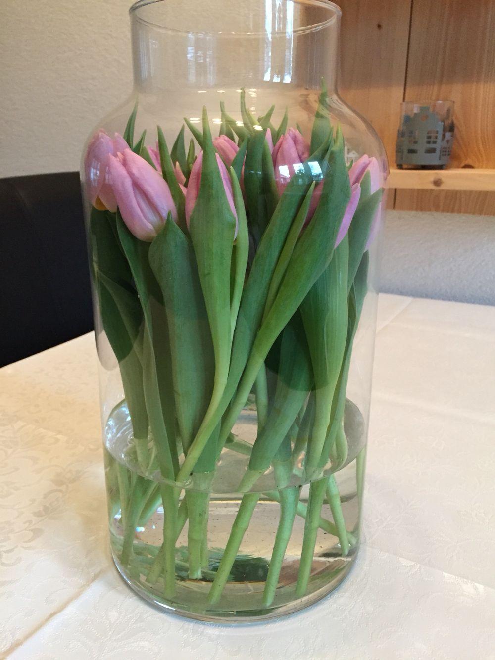 tulpen in een action vaas glaswerk pinterest. Black Bedroom Furniture Sets. Home Design Ideas
