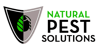 Chilliwack 1 Bug Rodent Removal Natural Pest Solutions Pest Solutions Rodent Removal Pests