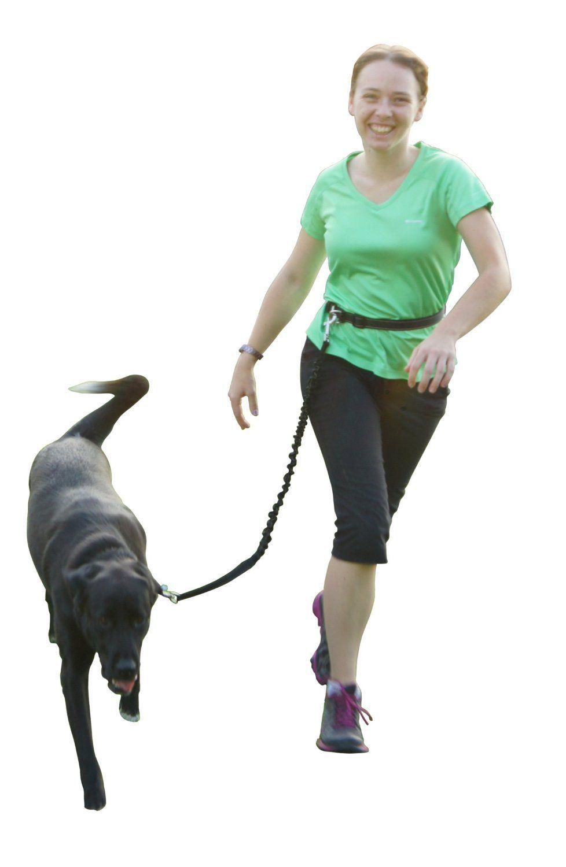 Sinnayeo Hands Free Reflective Running Walking Hiking And Jogging Dog Leash Adjustable Waist Belt Click I Aggressive Dog Dog Training Aggression Dog Leash
