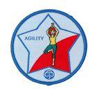 Guide Agility Badge - 2013 onwards