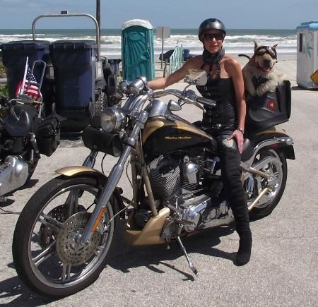Bike Week 9999 Daytona Bike Week 2012 Patricia Delicia With Her