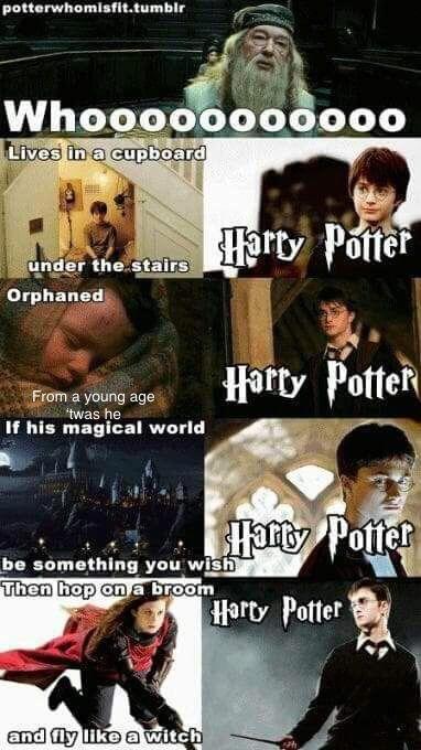 Harry Potter Harry Potter Haaarrrryy Pooooottter Hedwigs Theme Song Begins Harry Potter Memes Harry Potter Memes Hilarious Harry Potter Funny