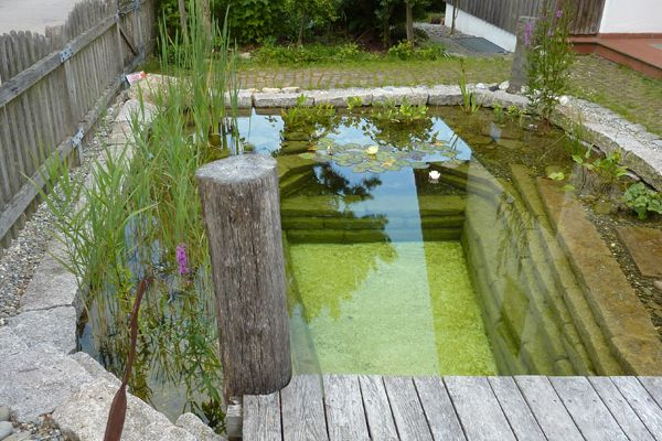 Teichbau Axel Dieterich Teichbau Schwimmteiche Pool