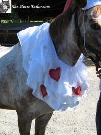 San Valentin Costume - The Horse Tailor