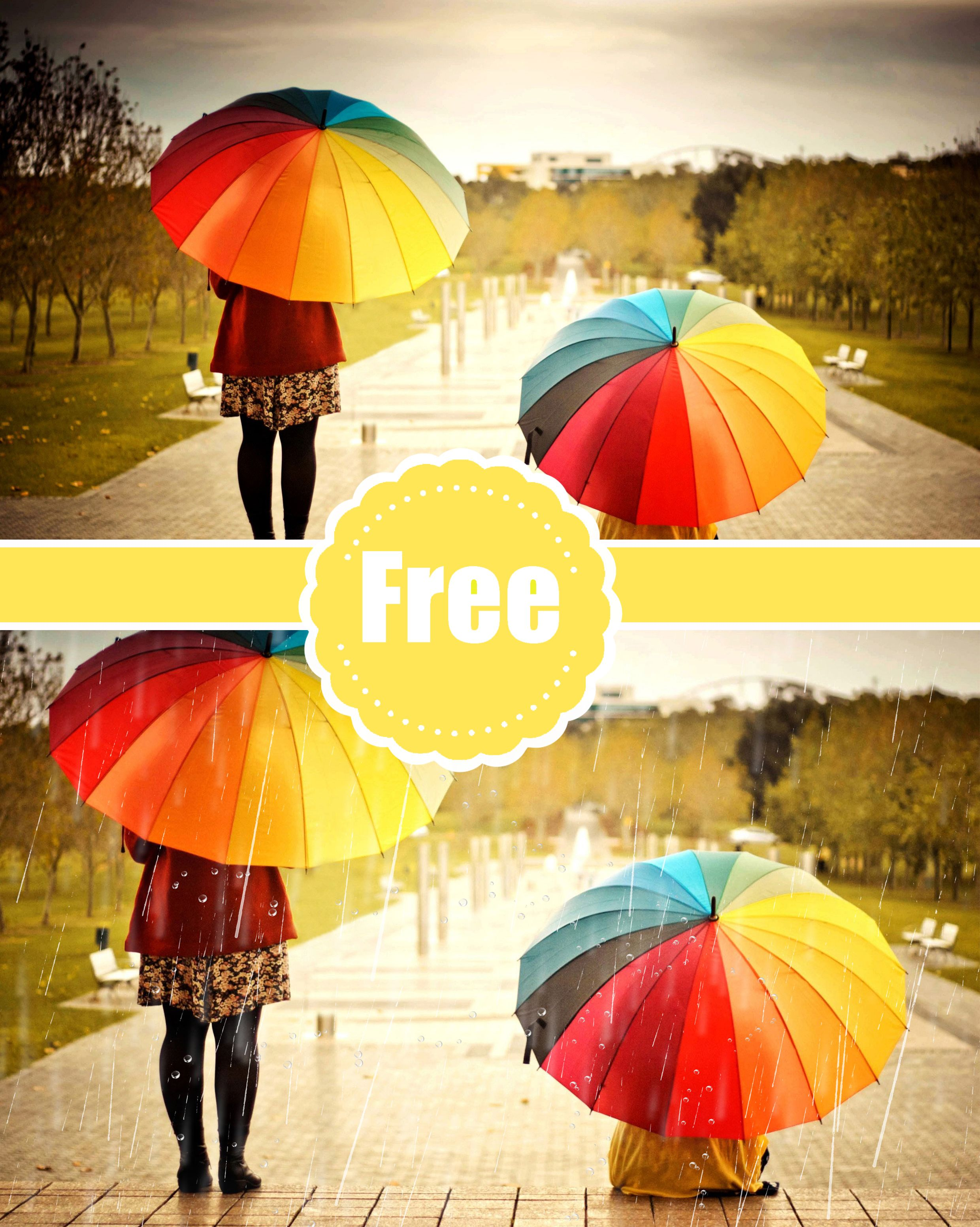 Rain Photo Overlays, Photography Overlays, Photography Photo Prop, png file