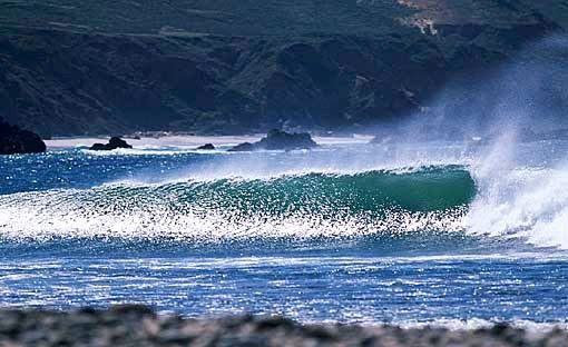 cas surf
