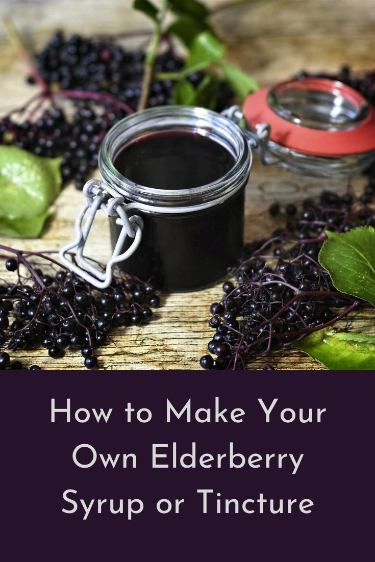 How to make elderberry syrup and tincture turn2thesimple