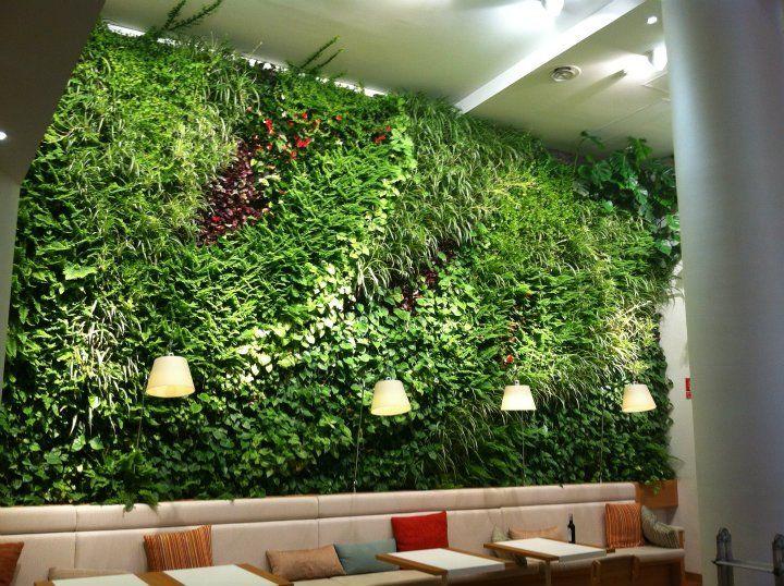Muro verde green wall plants plantas greentech en - Jardines verticales interiores ...