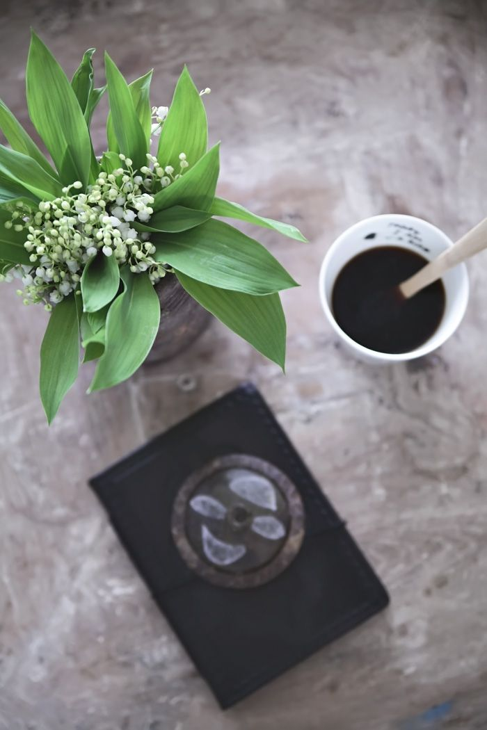 Lily of the valley | Coffee