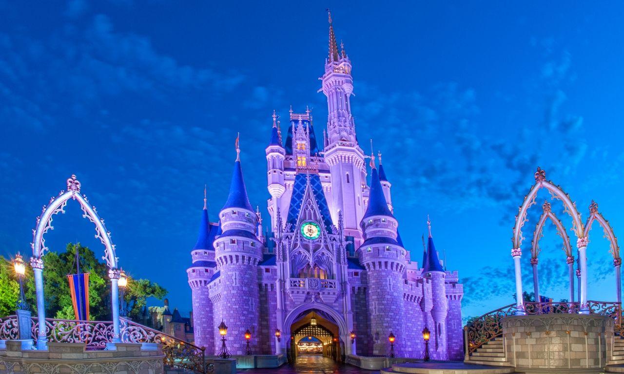 Disney animal kingdom package deals