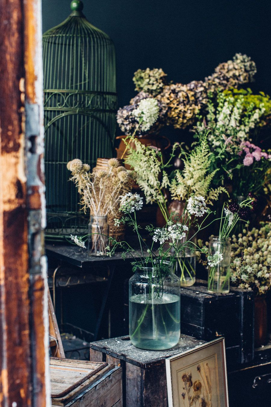 Dark Walls And Vintage Accents, Old Crates For Stands And Unusual Blooms.  Pot Plants