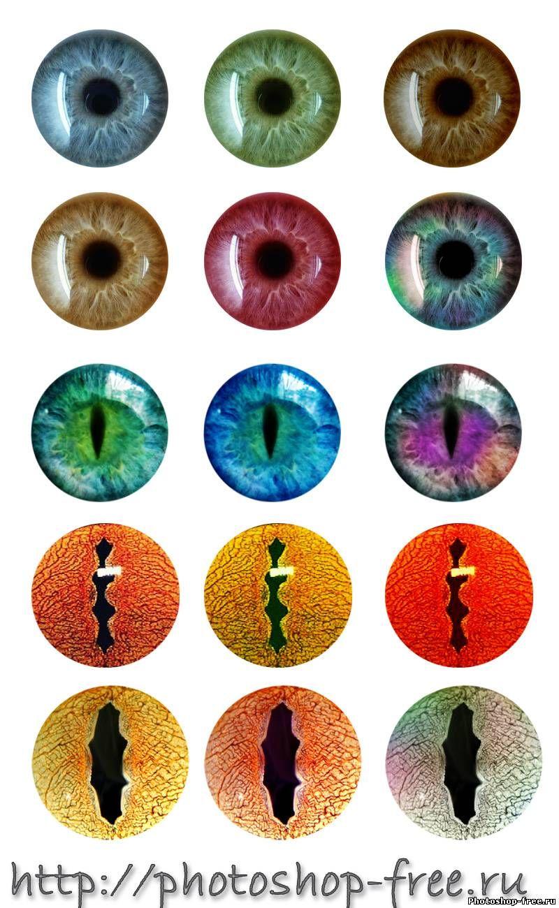 Шаблоны глазок: лучшие изображения (17) Глаза, Шаблоны