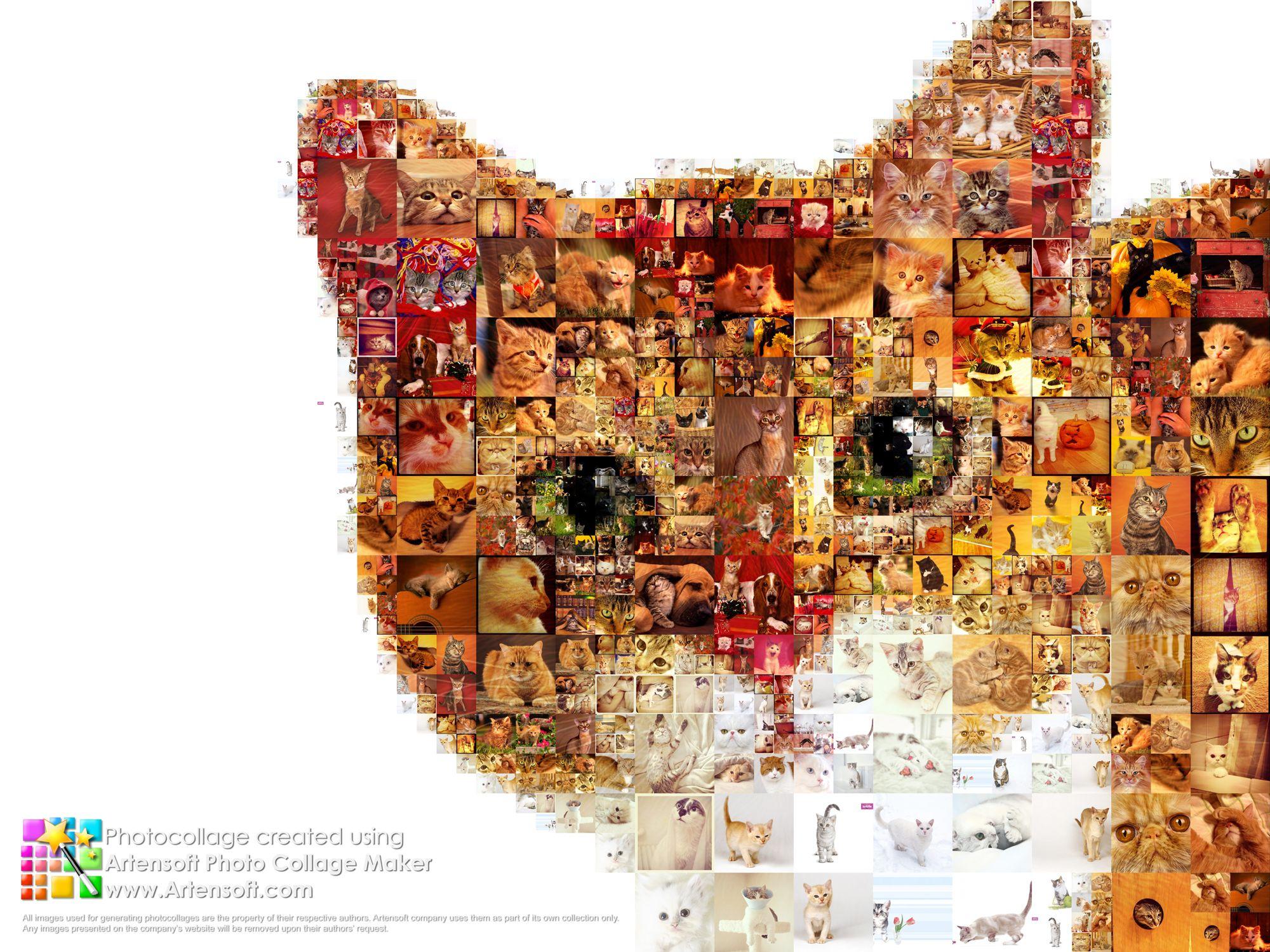 pic collages - Khafre