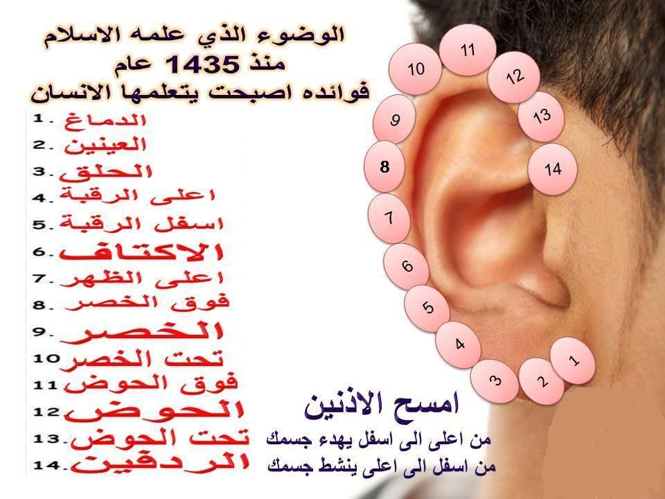 علاج الجسم عبر الأذن Health Knowledge Health Signs Health Fitness Nutrition