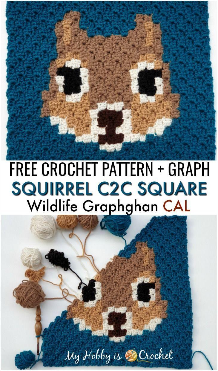 Squirrel C2C Square – Free Crochet Pattern| Wildlife Graphghan CAL, Block 20 (final block) – Crafts