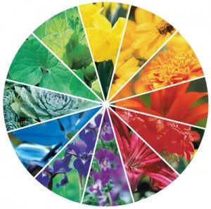 17 Best images about Color Wheels on Pinterest In fashion