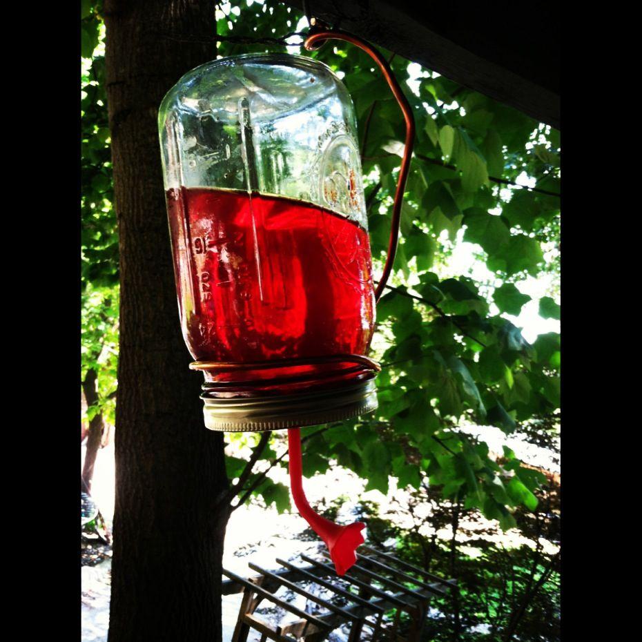 DIY humming bird feeder mason jar Diy hummingbird feeder