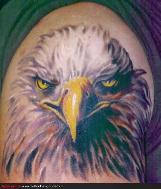 mod le tatouage aigle royal 301013 tatouage animal pinterest aigle royal aigle et. Black Bedroom Furniture Sets. Home Design Ideas