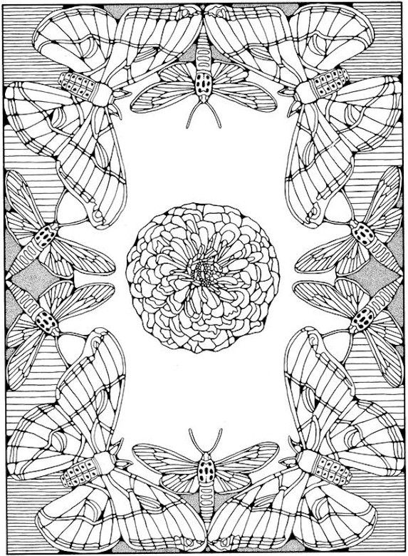 coloring pages for adults only adult coloring pages printable coupons work at home free coloring - Advanced Coloring Pages Butterfly