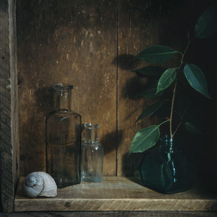 войти пароль фото натюрморт со светом от окна веков