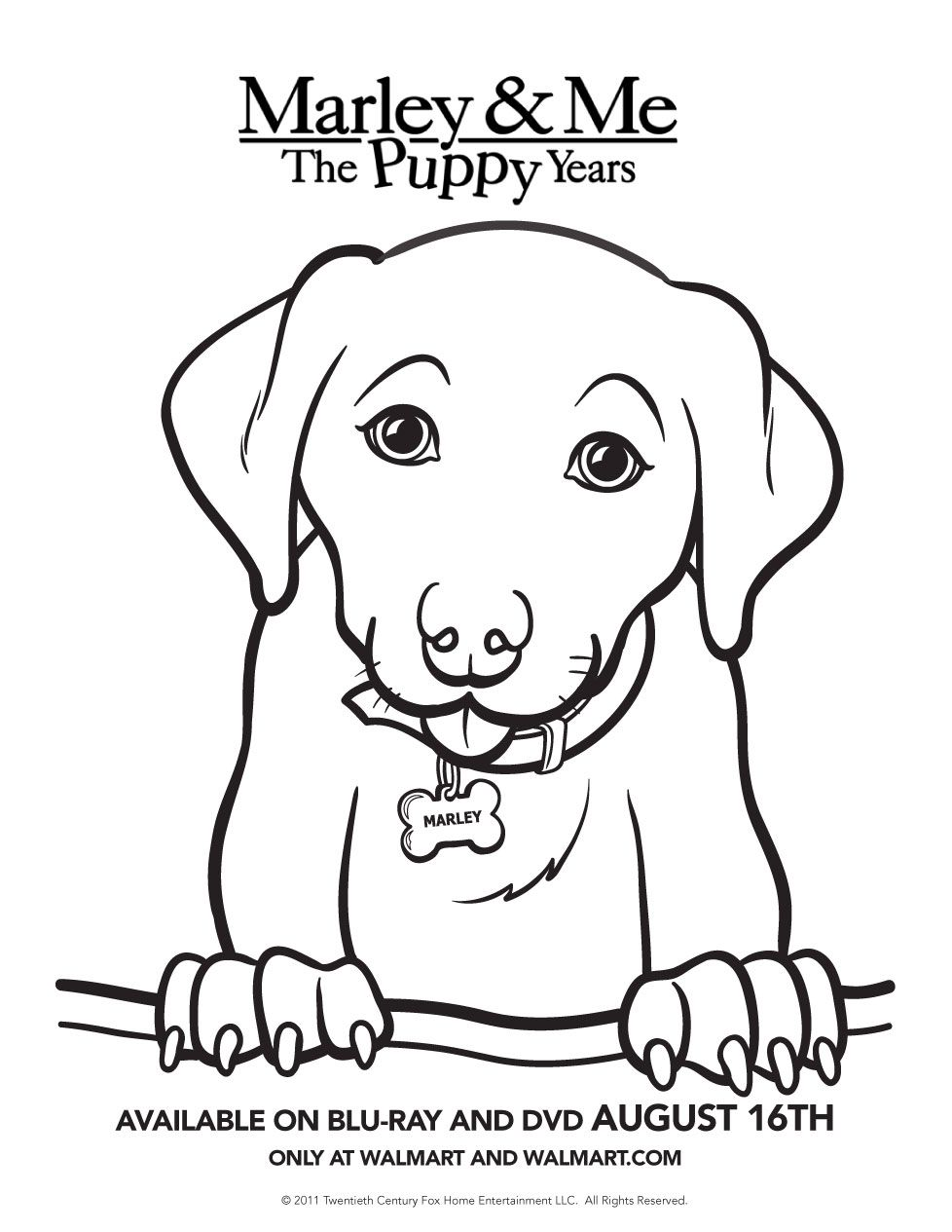 baby puppy coloring pages Baby Puppy Coloring Pages |  The Puppy Years Printable Activity  baby puppy coloring pages