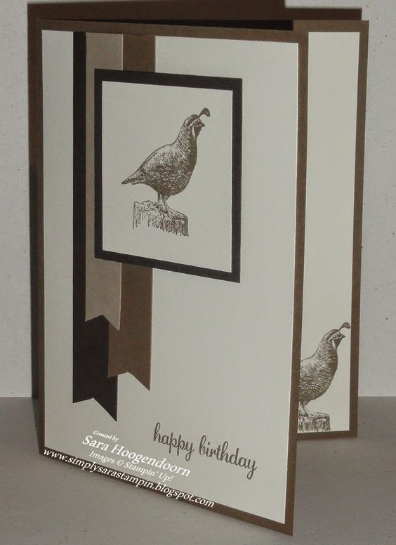 Walk in the Wild ~ Masculine Birthday ~ This clean and simple card was inspired by Try Stampin' on Tuesday's sketch challenge #211.