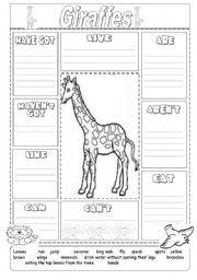 giraffe worksheet vocabulary worksheets the animals describing animals animal. Black Bedroom Furniture Sets. Home Design Ideas