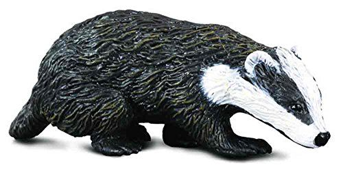 CollectA Eurasian Badger Figure ** You can find out more details at the link of the image.