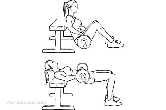 Image result for hip thrust workoutlab