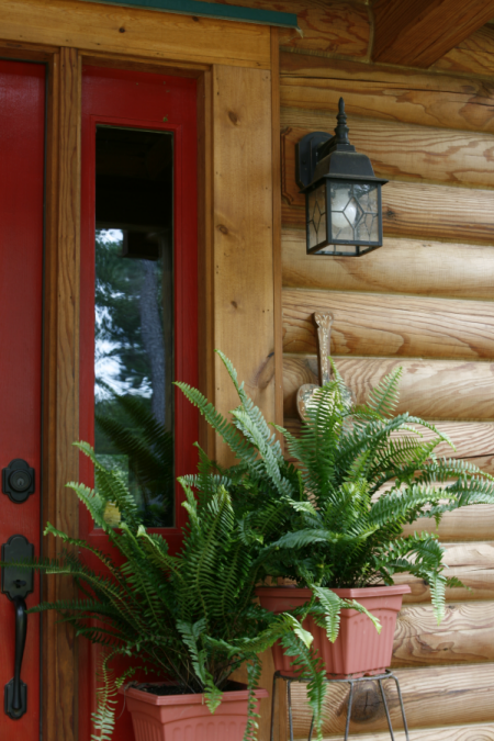 Love the ferns close to the front door Log homes, Log