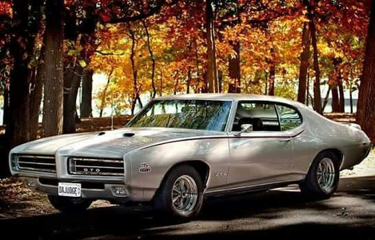 Pin By M B On Muscle Cars With Images Gto Car Gto