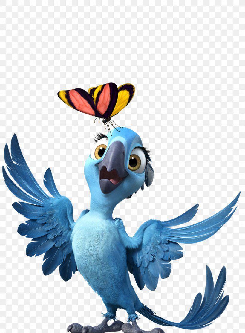 Rio Jewel Bia Blu Tiago Rio Png Jewel Beak Bia Bird Blu Cartoon Wallpaper Color Tag Rio